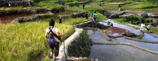 Trekking door de rijstterrassen - Ifugao, Luzon, Filipijnen