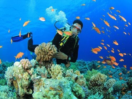 Cùng phiêu lưu các môn thể thao dưới nước tại  Đà Nẵng
