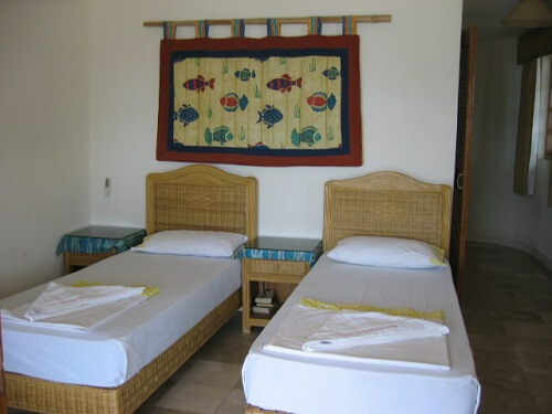 Golden Cowrie Room Resort B01 - Apo Island, Negros Oriental, Central Visayas, Filipijnen