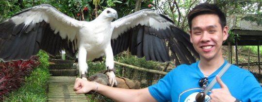 Philippine Eagle Center - Davao, Mindanao, Filipijnen