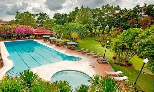 Zwembad - Hotel M01, Cebu City