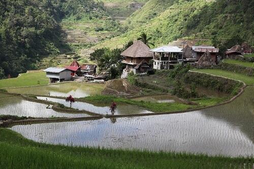 Banga-an Village - Provincie Ifugao, Luzon, Filipijnen